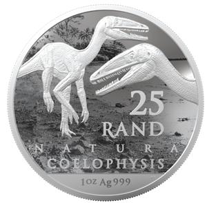 ZA 25 Rand 2020