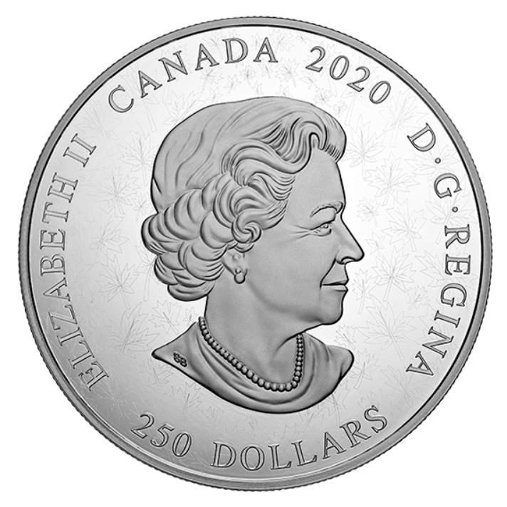 CA 250 Dollars 2020
