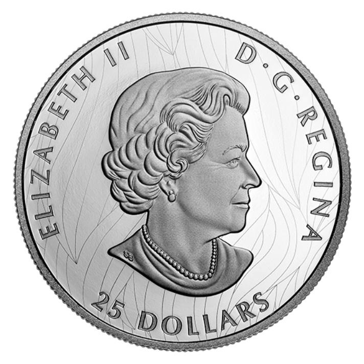 CA 25 Dollars 2020