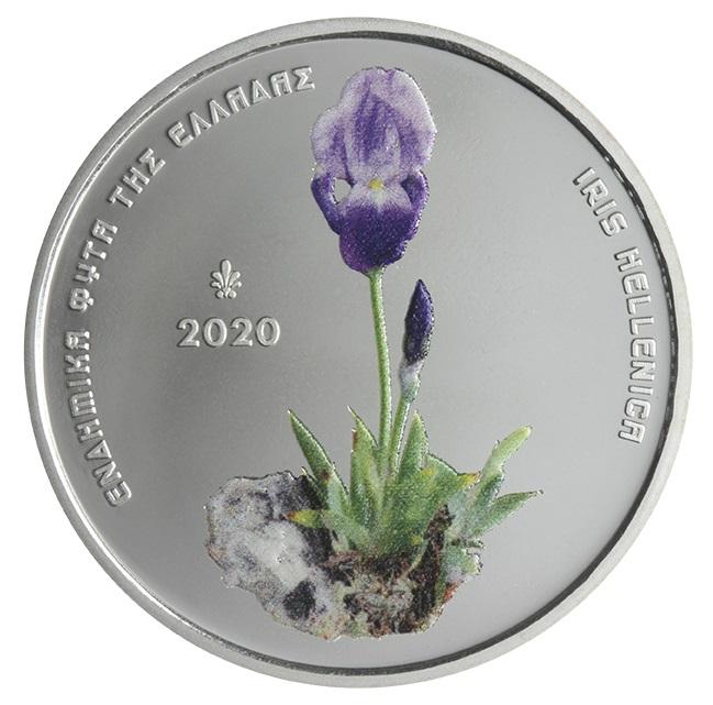 GR 5 Euro 2020 Palmette
